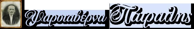 SPETSES: PATRALIS ETAIRIA PERIORISMENIS EFTHYNIS